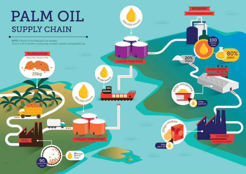 RSPO palm oil illustration