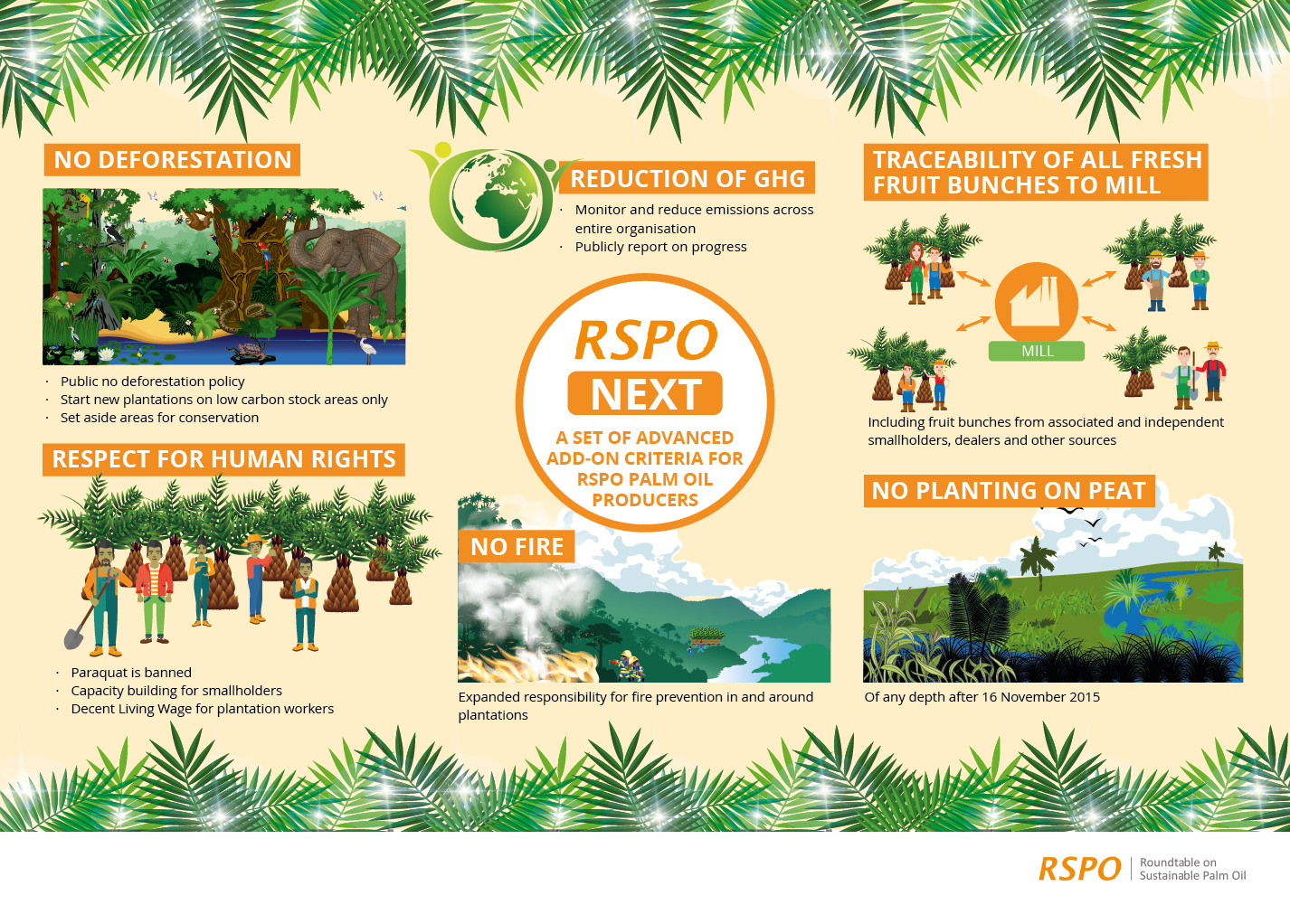 rspo next rspo roundtable on sustainable palm oil